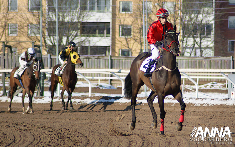 Taby galopp 18 4 knepig dubbel