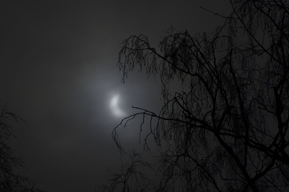 2015-03-20:022 Solar Eclipse by Magnus Norden