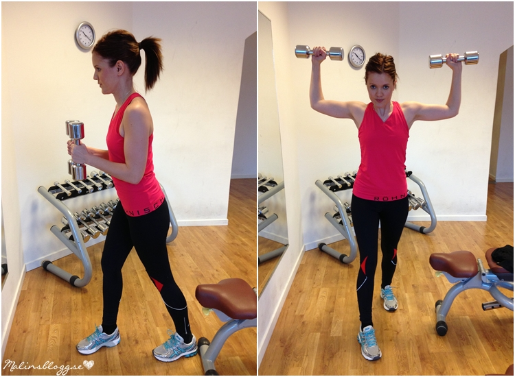 Dumbbell Rear Lateral Raise