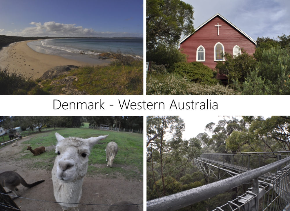 Denmark and Albany area, Western Australia: Cosy Corner Beach, St Leonard's Anglican Church, Denmark Animal Farm & Pentland Alpaca Stud, The Valley of the Giants Tree Top Walk