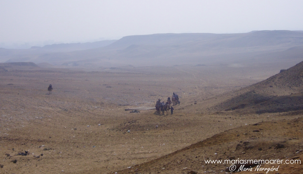 Giza Plateau, desert and Bedouins