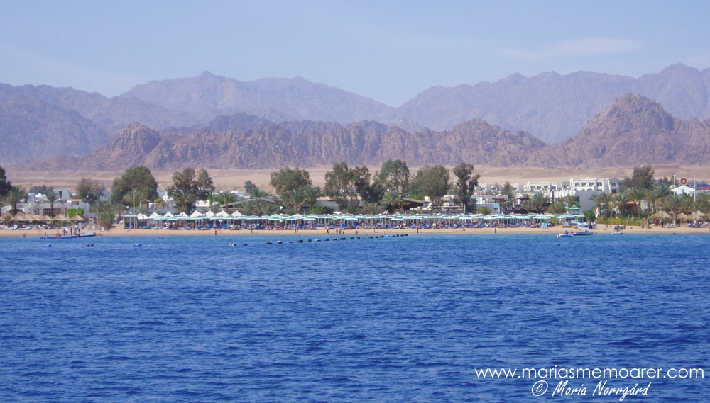 Sharm el Sheikh and the Red Sea, Sinai Peninsula, Egypt / Röda havet och Sinaihalvön, Egypten