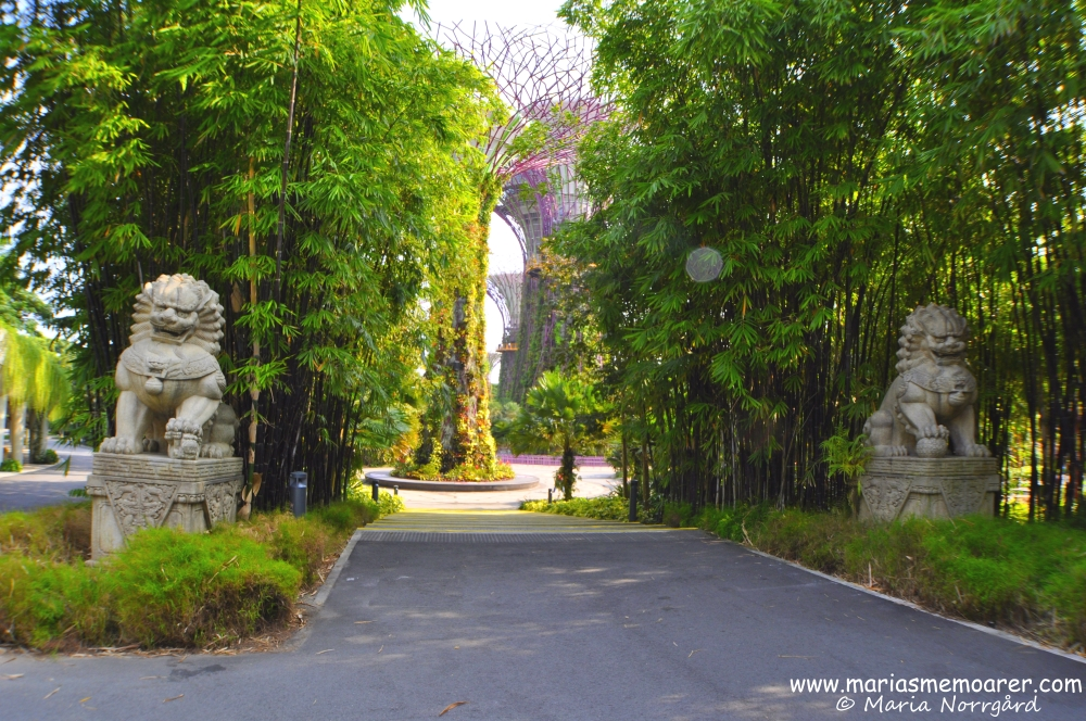 Gardens by the Bay, Singapore, South East Asia