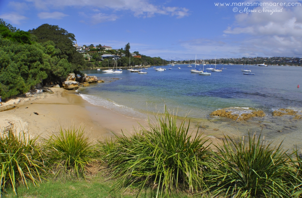 pittoresque views along the hermitage foreshore walk, Sydney / idylliska vyer