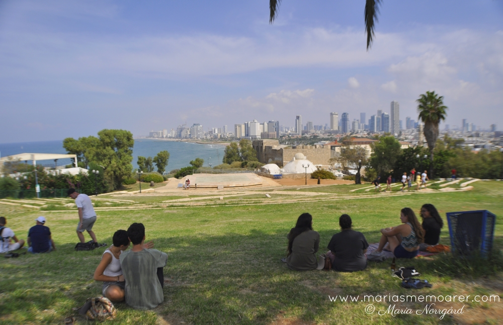 view of Tel Aviv from HaMidron Garden in Jaffa