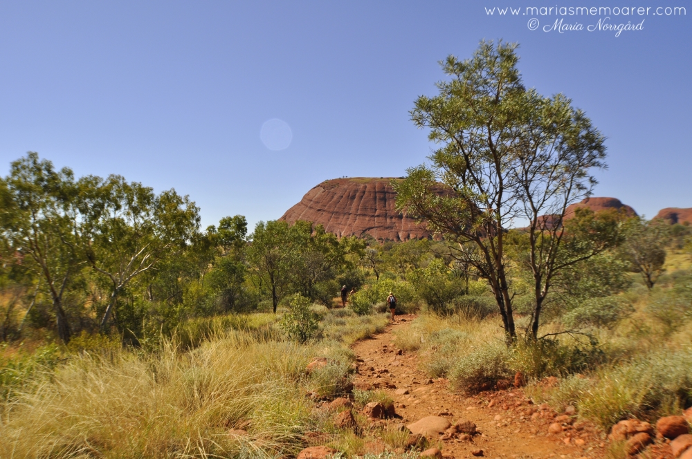 vandring i Kata Tjuta nationalpark, Australien: Valley of the Winds