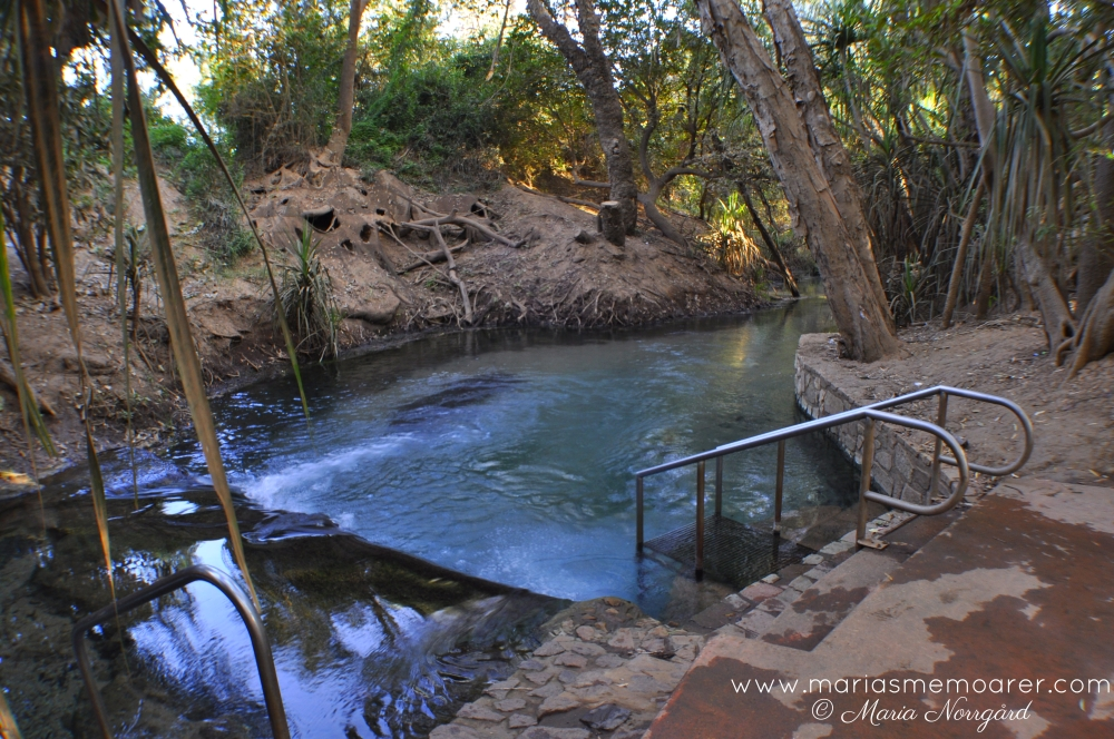 things to do in Katherine, near Darwin (Australia) - hot springs for a bath