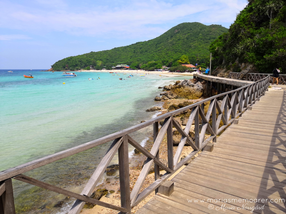 ko lan, island near Pattaya and Bangkok - Thailand