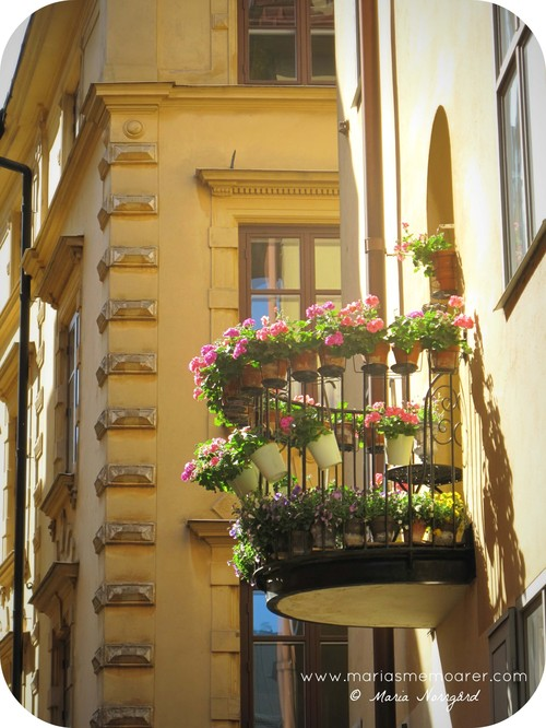 Gamla stans vackraste balkong / my favourite balcony in Old Town, Stockholm