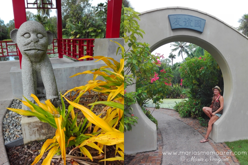 places to see in Cairns, Queensland - Botanic Gardens