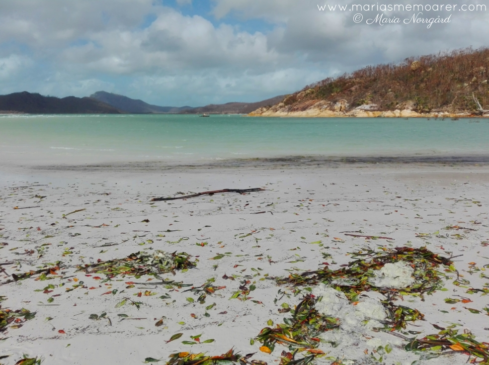 Whitsunday Islands mess  after Debbie cyclone