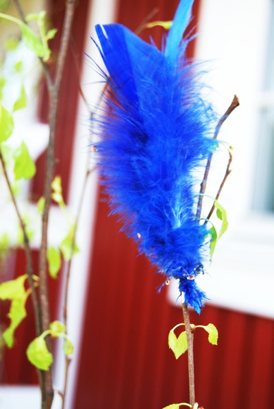 feather bluue
