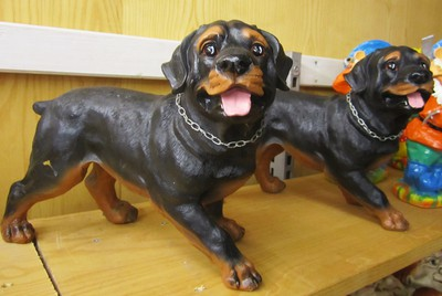 Rottweilers...