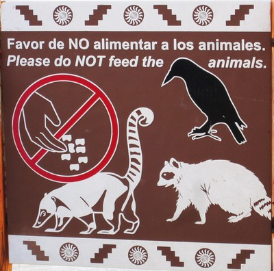 Don´t feed the animals!