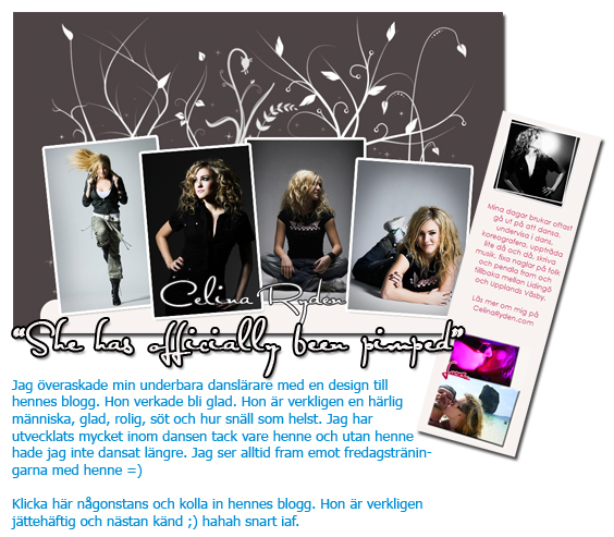 Checka bloggen