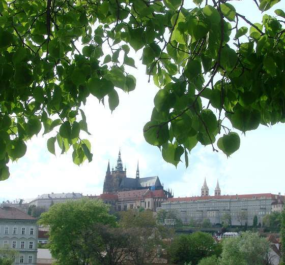 Another picture of Prague Castle