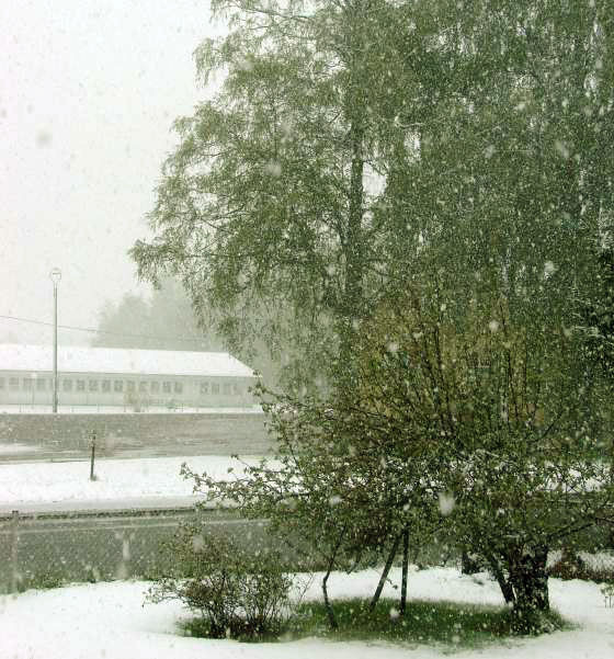 Late May snow
