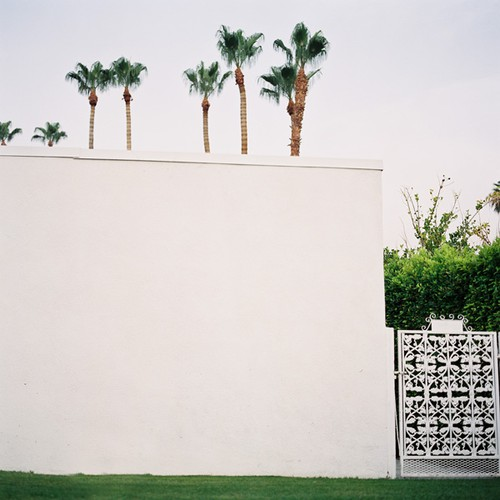 Jose VillaPalm Springs on Hasselblad 8