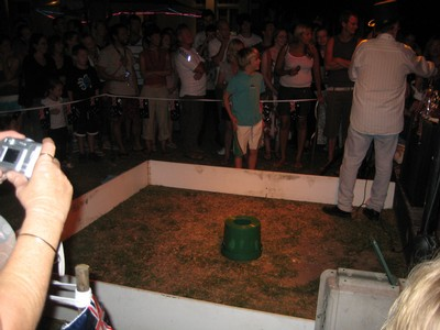 Toad Race in Cairns