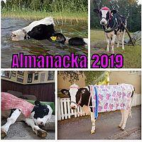 Almanacka 2019